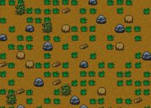 Player field