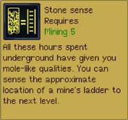 Stonesensedescription