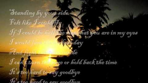 Westlife - Too Hard To Say Goodbye with Lyrics (12 of 12)
