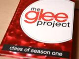 The Glee Project : Saison 1
