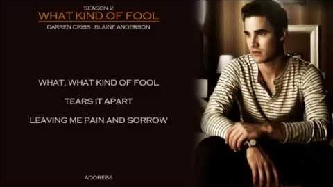 Glee What Kind Of Fool Lyrics