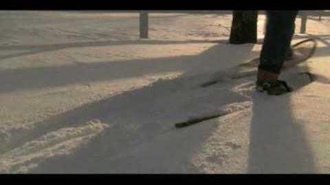 Bon Iver - Skinny Love - Music Video