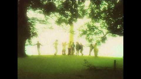 Edward Sharpe and the Magnetic Zeros - Home Official Video