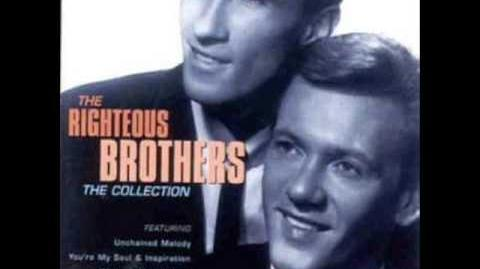 THE RIGHTEOUS BROTHERS YOU`VE LOST THAT LOVIN` FEELIN`
