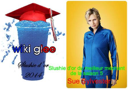 Slushie2014 meilleur méchantS5