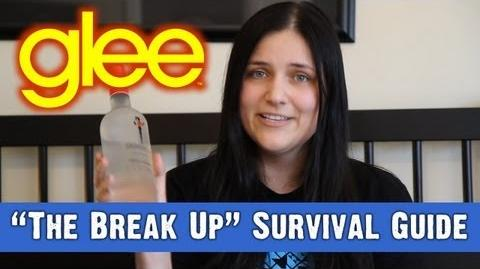 """The Break Up"" Survival Guide"