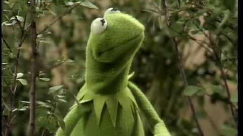 """The Muppet Show Kermit - """"Bein' Green"""""""