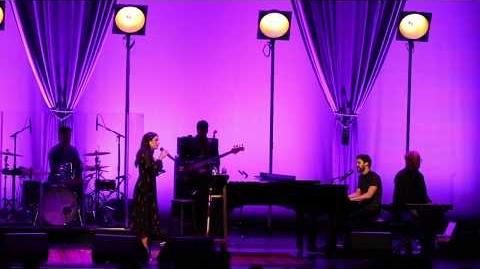 Darren Criss, Lea Michele - This Time (Live on the LM DC Tour)