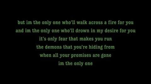 I'm The Only One - Melissa Etheridge Lyrics on screen