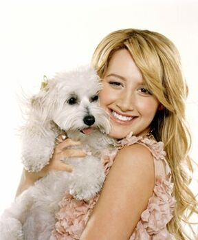 Ashley-tisdale-and-her-dog