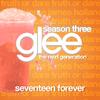 Seventeenforever