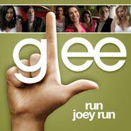 Glee - joey