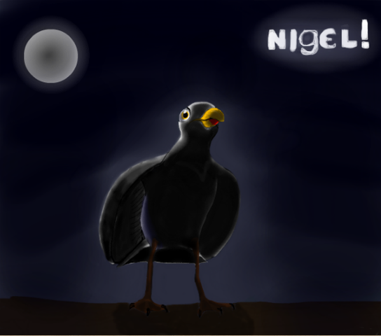 File:Nigel the seagull-0-1.png