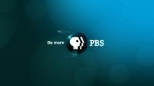 PBS (2009)