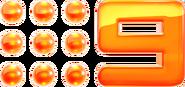 Nine2012 Orange