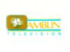Amblin Television 1991