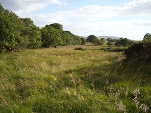 Grasslands2