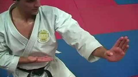 World Games Kata Champion Antonio Diaz
