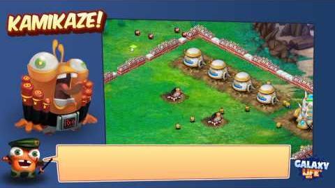 Kamikaze Training Video