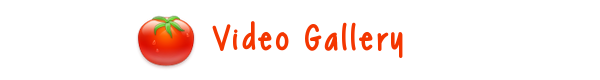 Videogal