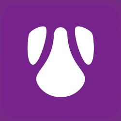 Dark-Nebula-logo