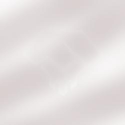 Stealth-Division-Logo