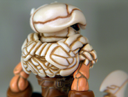 Skeleden-Ullcroth-CLOSE-BACK-WEB
