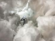 Silver-Blizzard-6-WEB