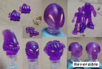 Accessories-pack-purp