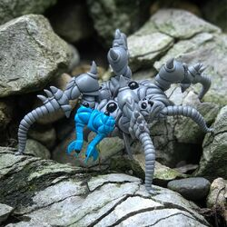 Stone Crawler Close Up
