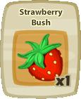 Inv Strawberry Bush