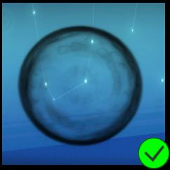 PaC Black Bubble