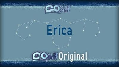 Go All Out! Fighter Showcase Erica