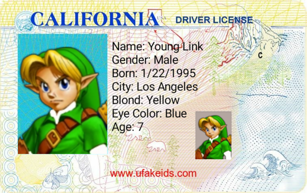 Young Link's Drivers License
