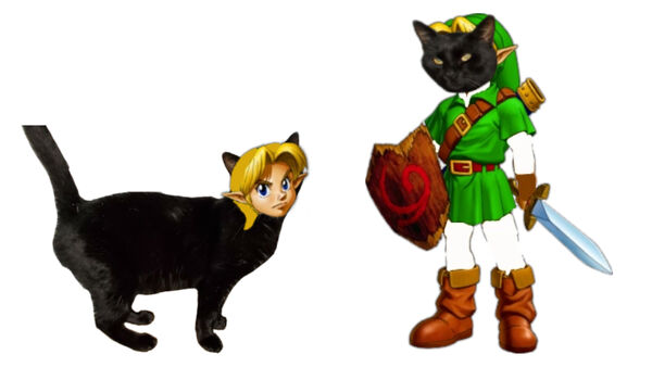 Young Link And James The Black Cat Face Swap