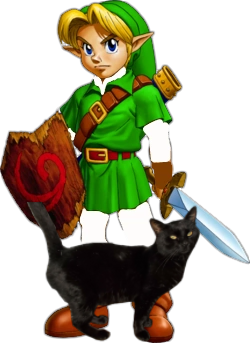 Young Link And His Pet James The Black Cat