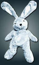 Fred the Bunny
