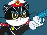 Black Cat Detective
