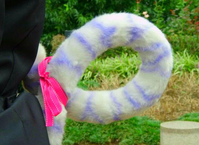 File:Amu side tail (new one).jpg