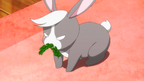 -HorribleSubs- Gochuumon wa Usagi Desu ka S2 - 02 -1080p-00221