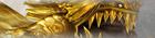 Golden Gboro-Gboro Banner