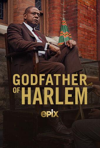 how many episodes of godfather of harlem