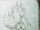 DraugrShield-CodexSketch.png