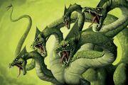 Hydra jpg