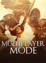 Multiplayer mode