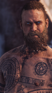 Wind in the beard