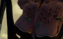 Megaera Cleavage rash offsprings