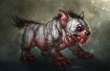 Cerberus-puppy