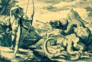 Apollo python