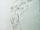 GloomNightmares-CodexSketch.png